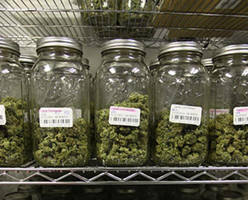 Cannabis flower jars